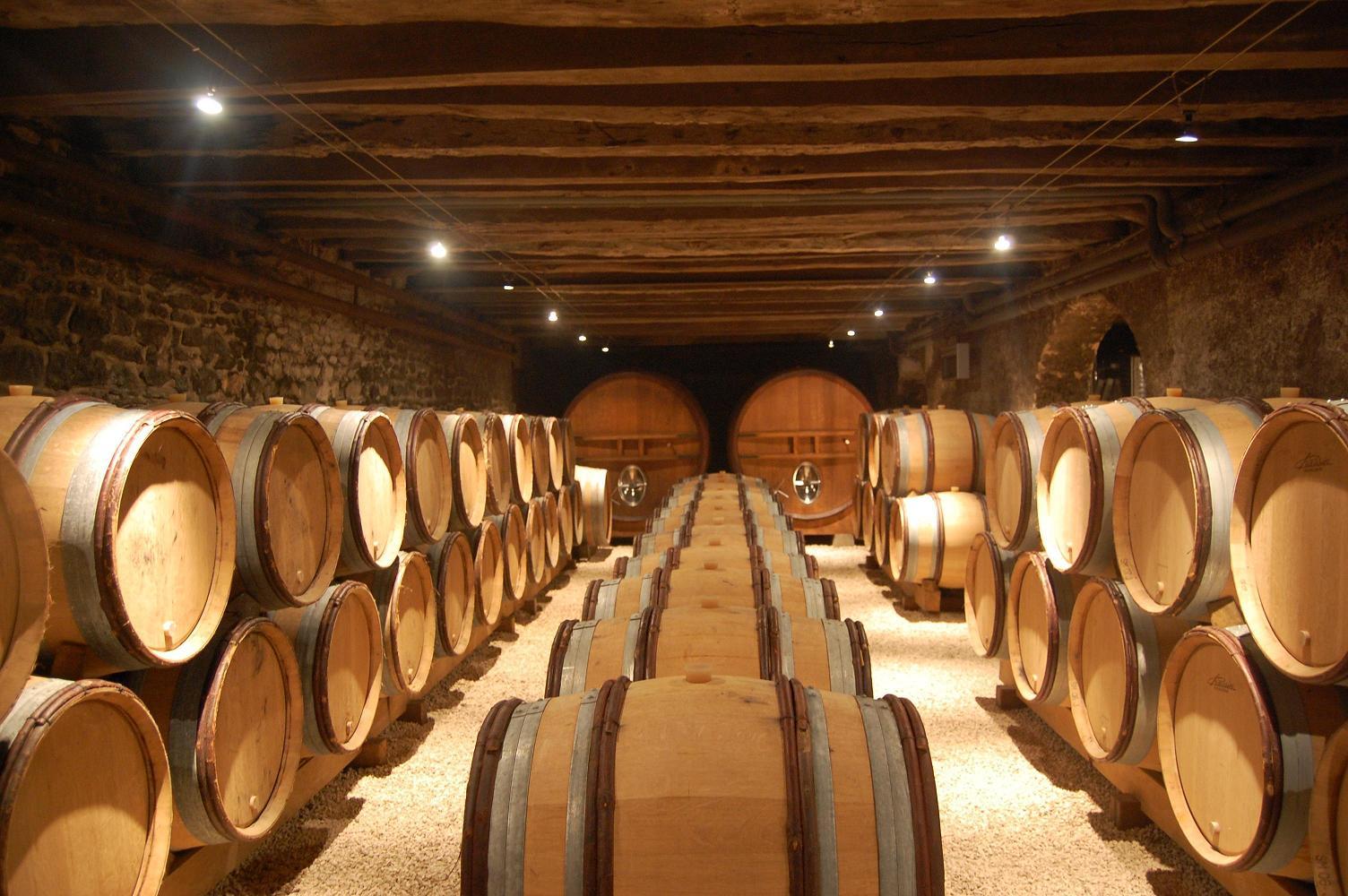 Parfait pour découvrir de nouveaux vins