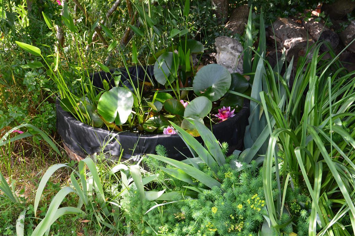 Jardinière : je vous conseille vivement d'éviter le plastique
